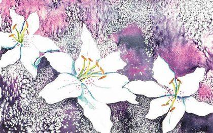 Magical Lilies
