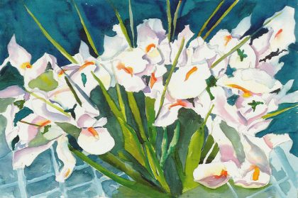 Simply White Irises