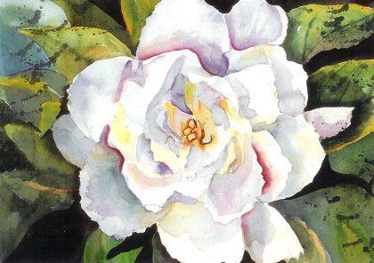 Smell of Gardenia