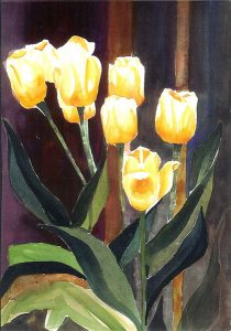 Sunshine Tulips