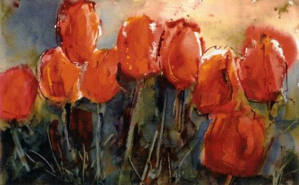 True Tulips